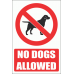 PV20EN - No Dogs Allowed Explanatory Safety Sign
