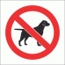 PV20N - No Dogs Allowed Safety Sign
